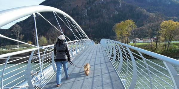 Una mujer paseando con un perro